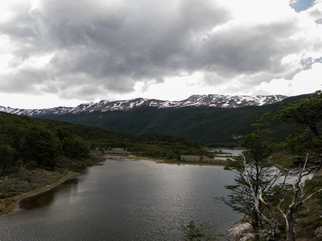 More from Tierra del Fuego National Park
