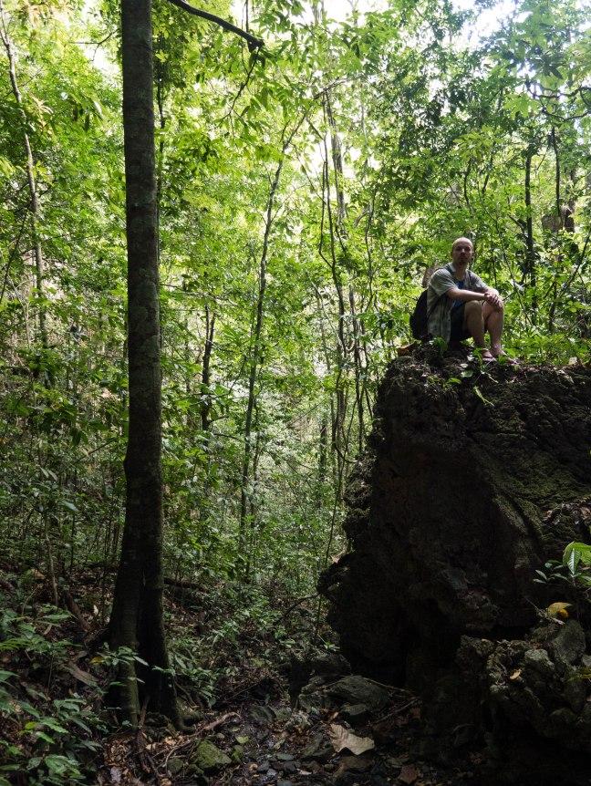Exploring the jungle around Phang Nga.