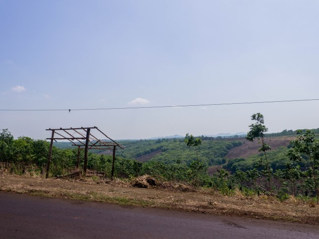 Rolling hills in Eastern Cambodia.