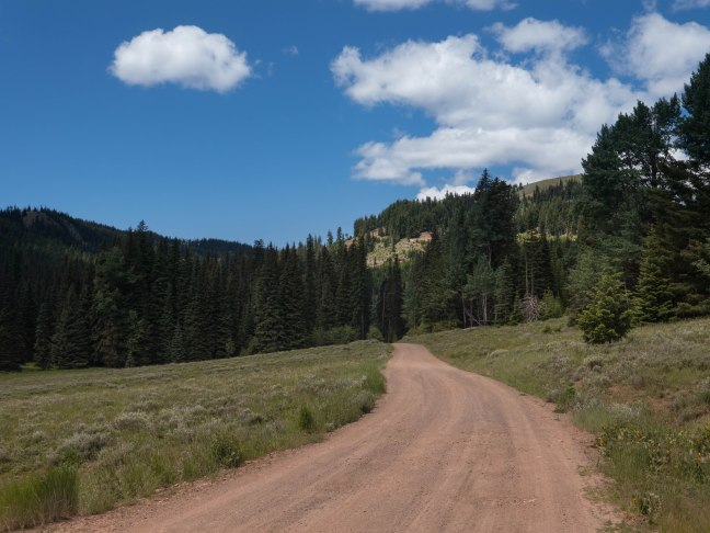Lonely dirt roads. Until the dirt bikes and ATV's show up.